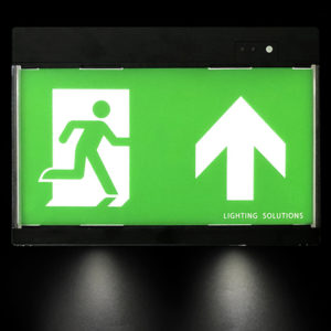 Electric escape route signage with emergency lighting