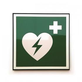 E010 AED Board